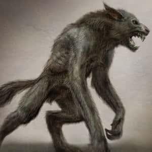 Существо, похожее на волка