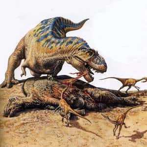 Как питается тираннозавр