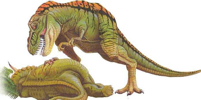 Тираннозавр-падальщик