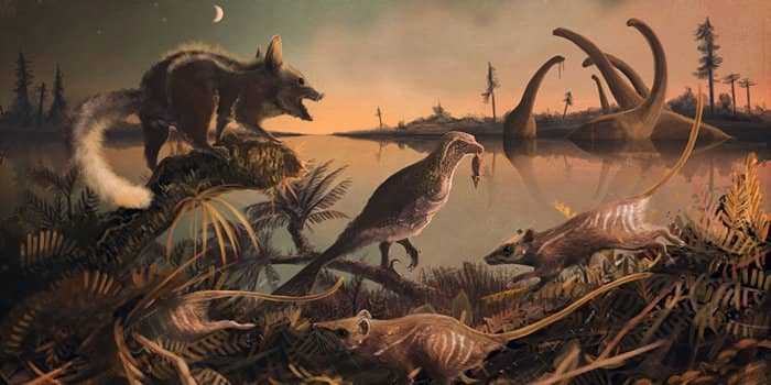 Древние млекопитающие