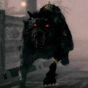 Фантомная черная собака