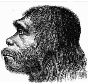 Рисунок неандертальца