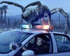 Огромный паук на крыше машины
