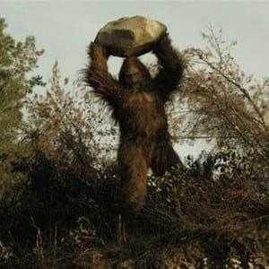 Бигфут бросает камень