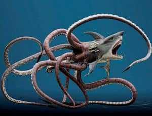 Чудовище Багам - гибрид акулы и осминога