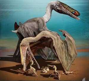 Птерозавры с детенышами
