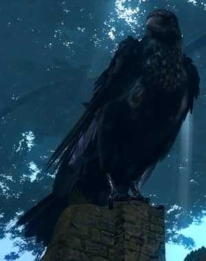 Гигантская ворона