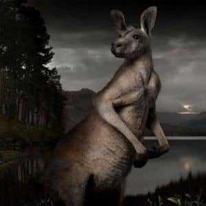 Призрачный кенгуру