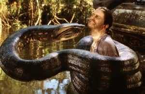 Змея душит человека