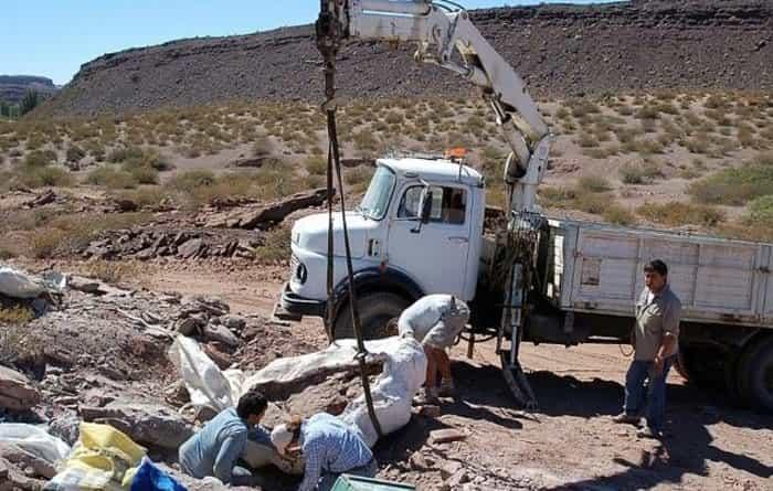 Раскопки нового вида динозавров в Аргентине