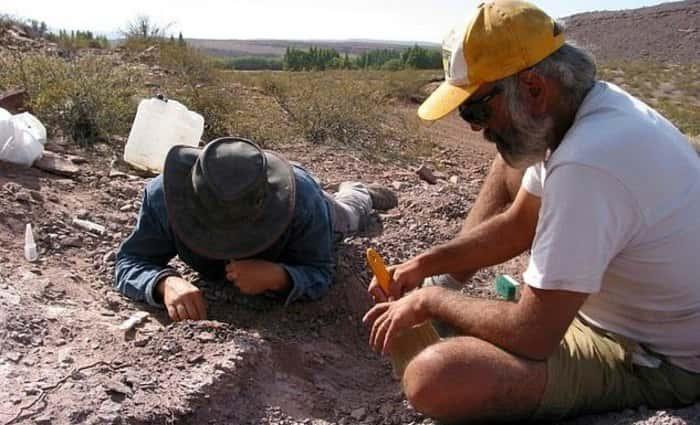 Раскопки динозавров в Аргентине