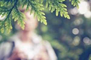 Силуэт человека в лесу