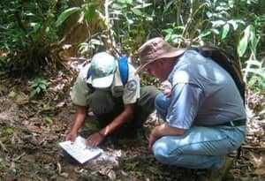 Смерть от чупакабры в Гондурасе