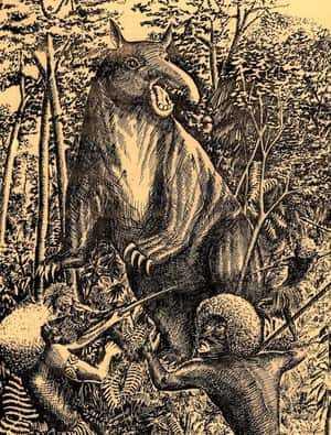 Дьявольская свинья и туземцы
