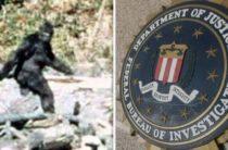 Бигфут и ФБР: заговор, контрабанда и война во Вьетнаме