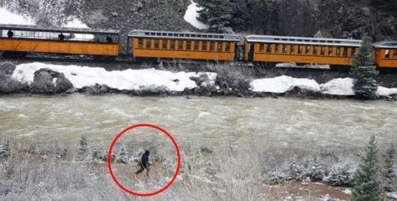 Всевозможные загадочные существа вблизи железных дорог