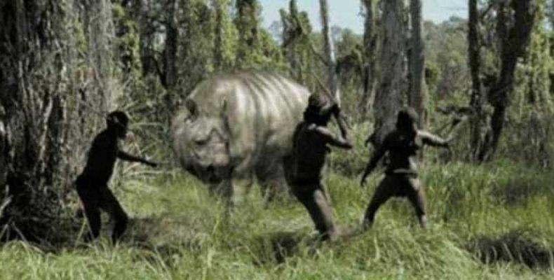 Газека Монктона — дьявольская свинья Новой Гвинеи
