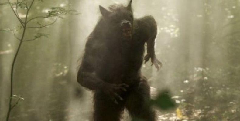 Мужчина из Арканзаса утверждает, что видел гуманоида с волчьей головой