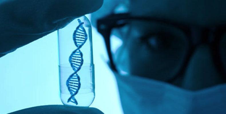 Обнаружен червь, способный перевернуть представление о генетике