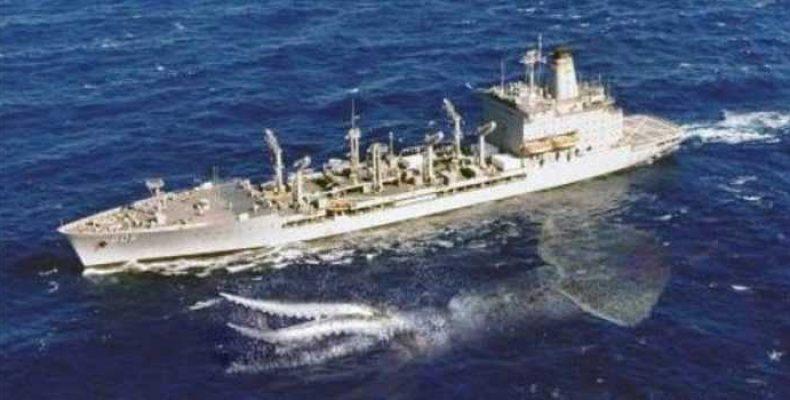 Паром в Японии столкнулся с неопознанным морским существом