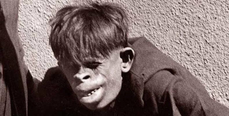 Первый гибрид человека и обезьяны появился в США