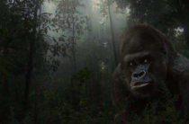 Таинственные гоминиды джунглей Южной Америки