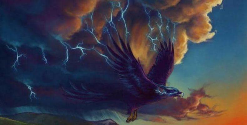 На крыльях грозы: В США учитель заметил «громовую птицу»