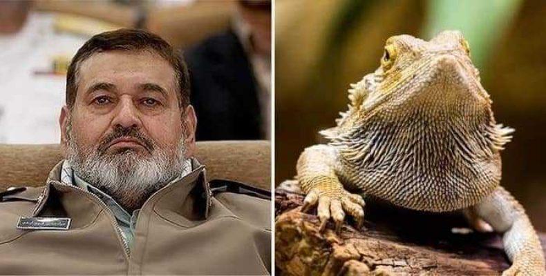 Иран обвиняет Запад в использовании ящериц-шпионов