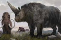 Индрик-зверь: место в русской мифологии