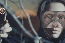 Жуткая «обезьянья ведьма» Ла Мона заснята на камеру в Коста-Рике