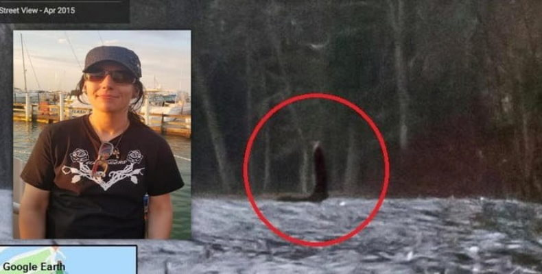 Женщина в Огайо увидела лох-несское чудовище, не выходя из дома