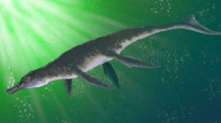 Находка времен юрского периода открыла новое звено в эволюции крокодилов