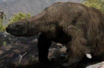 Гигантские ленивцы: среда обитания и причины вымирания