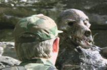 Монстры на военной базе ВВС Олконбери, Великобритания