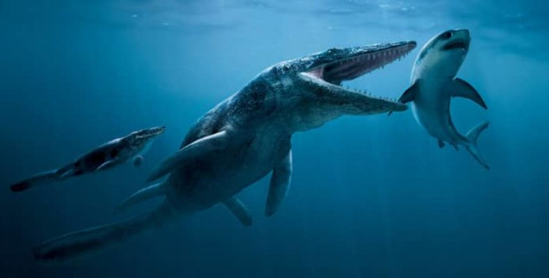 Морские динозавры: подборка крупнейших обитателей глубин