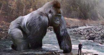 Когда обычные животные вырастают до огромных размеров