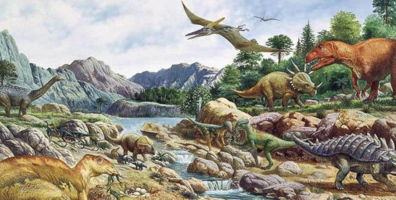 Прямые предки человека: останки обнаружены в Англии