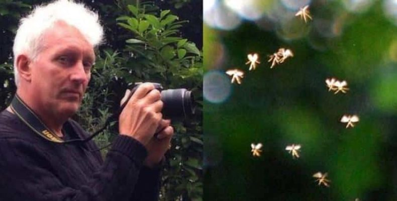Профессор из Великобритании снял на фото настоящих фей