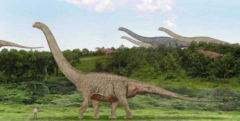 Самые большие динозавры: 11 невероятных ящеров