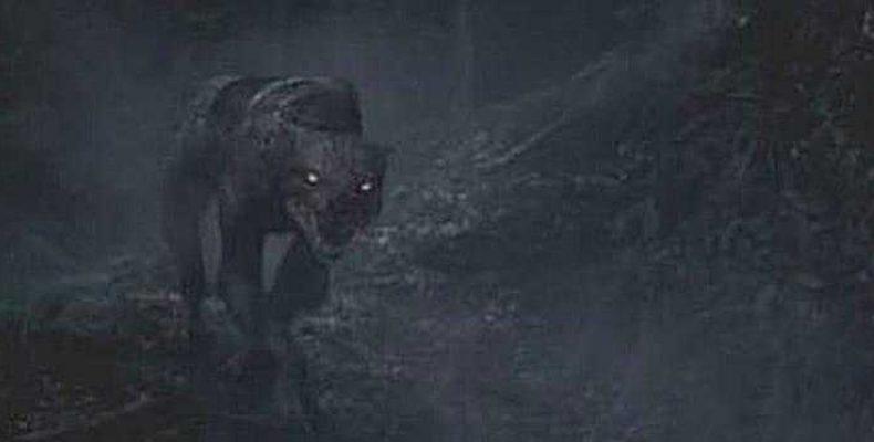 Зверь Дартмура — призрачная гончая или лучший друг человека?