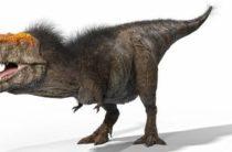Ученые рассказали, как на самом деле выглядел тираннозавр