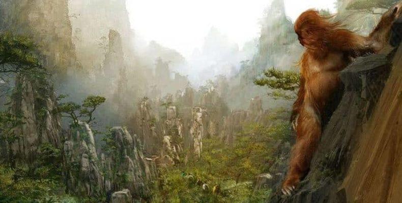 Хон паа: самое невероятное и малоизвестное животное